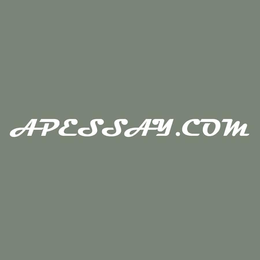 Apessay.com Review